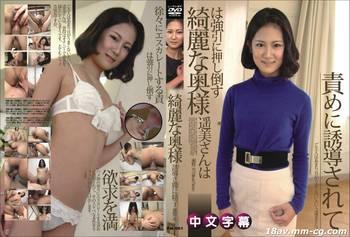 無碼中文 PM-661 將美麗的妻子強行推倒 瀨野 光 Hikari Seno